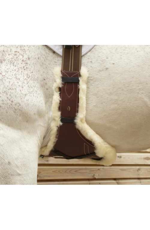 Protege bavette mouton lemieux pour chevaux