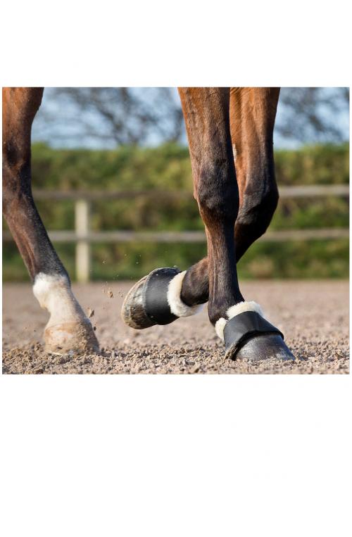 Cloches pour chevaux Horze Signature