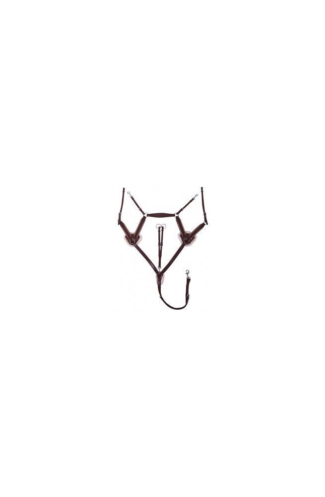 Collier de chasse ontario havane/full
